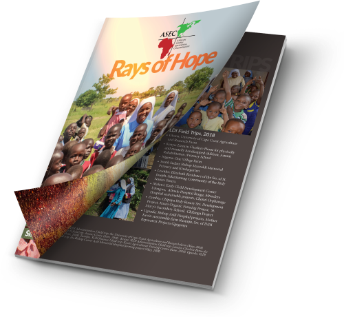 Rays of Hope Annual Newsletter Design
